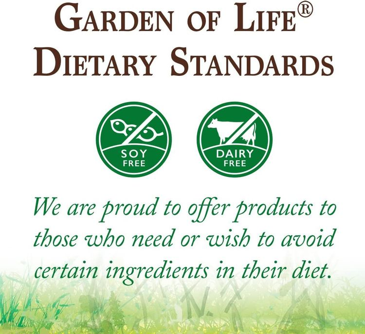 Garden of Life Raw Organic Protein & Greens Chocolate - 20 Servings (10 Packets), Vegan Protein Powder for Women & Men with Juiced Greens, 20g Plant Protein, Probiotics & Enzymes, Low Carb Shake