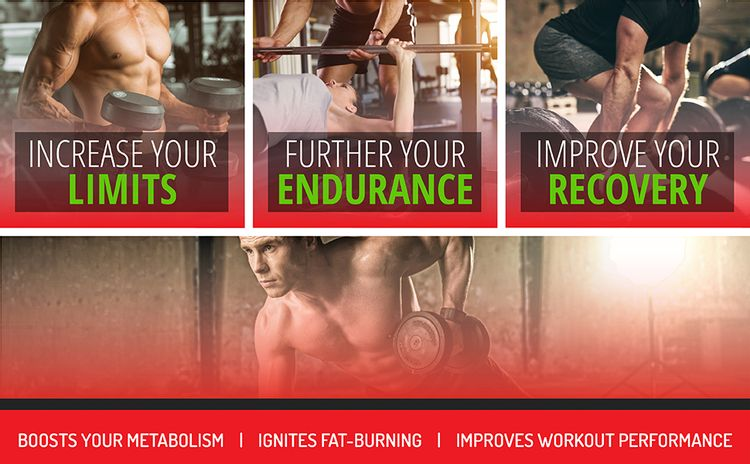 L-Carnitine, Energy, Stamina, Recovery, Cardiovascular, Weight Loss, Metabolism, Training, Fitness